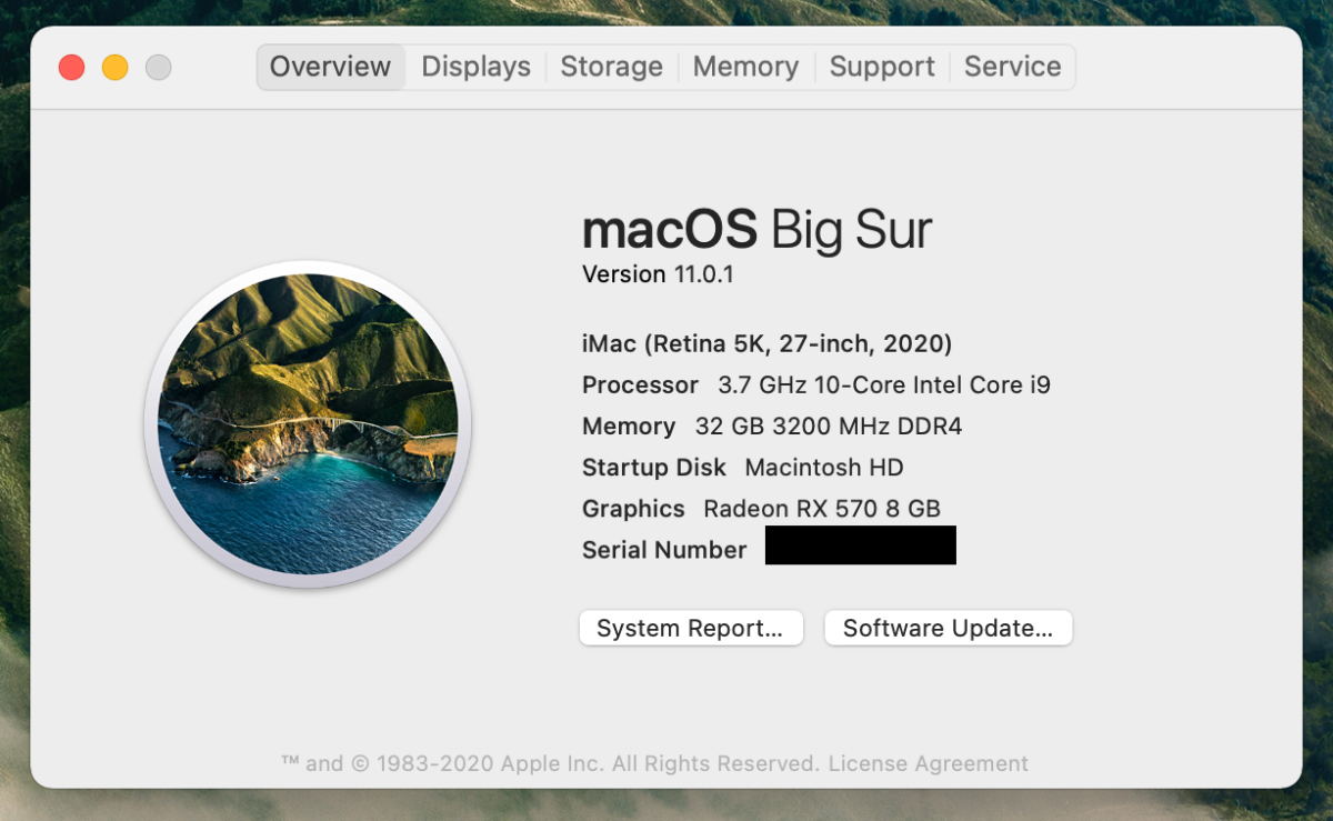 macOS Big Sur 11.0.1 Information Window